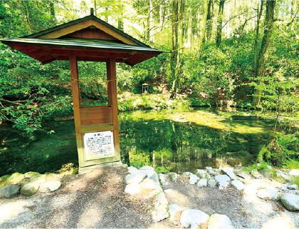 産山村/乗馬体験と池山水源見学コース